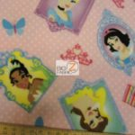 Frame & Dots Disney Polar Fleece Fabric