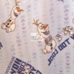 Frozen How Cool Can You Get Disney Polar Fleece Fabric