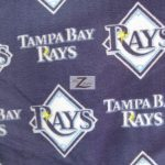 MLB Polar Fleece Fabric Tampa Bay Rays
